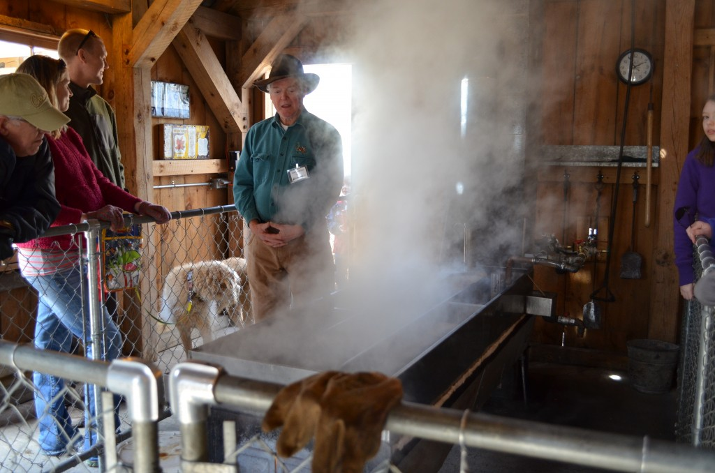 Inside the Sugar Shack watching sap boil into maple syrup.