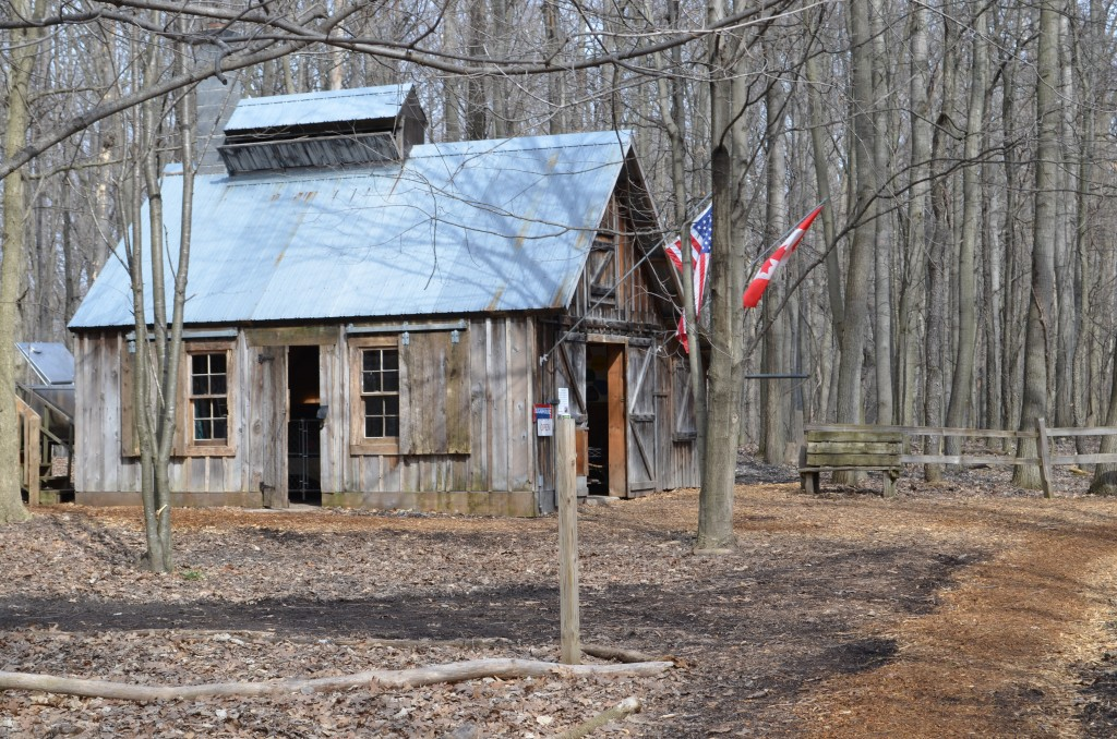 The sugar shack at Blandford Nature Center