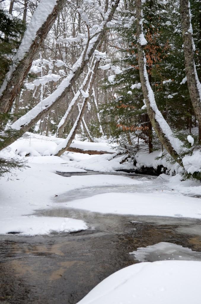 Stream in Eben Ice Caves Area